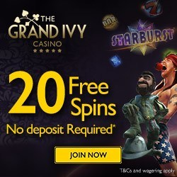 new no deposit casino